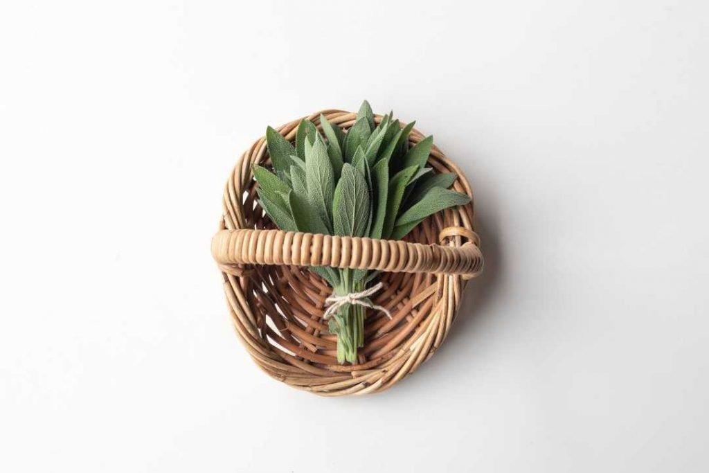 bunch of leaves in wicker basket
